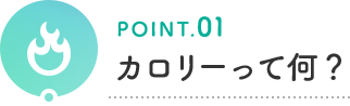 POINT.01 カロリーって何?