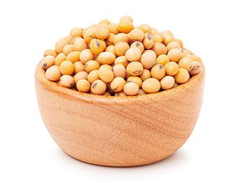 豆類(大豆、ひよこ豆など)