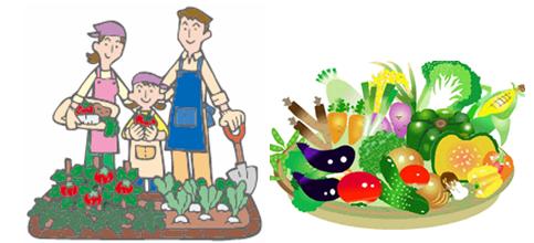 家庭菜園0227